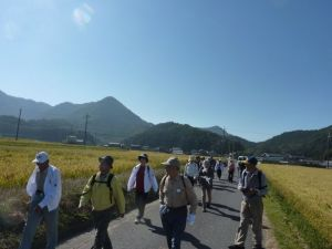 151018 (レポート)散歩道「官兵衛の里から古奈為神社を歩こう」