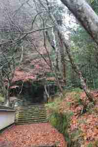 161127 【レポート】バスツアー「紅葉狩りと昼食バイキング」