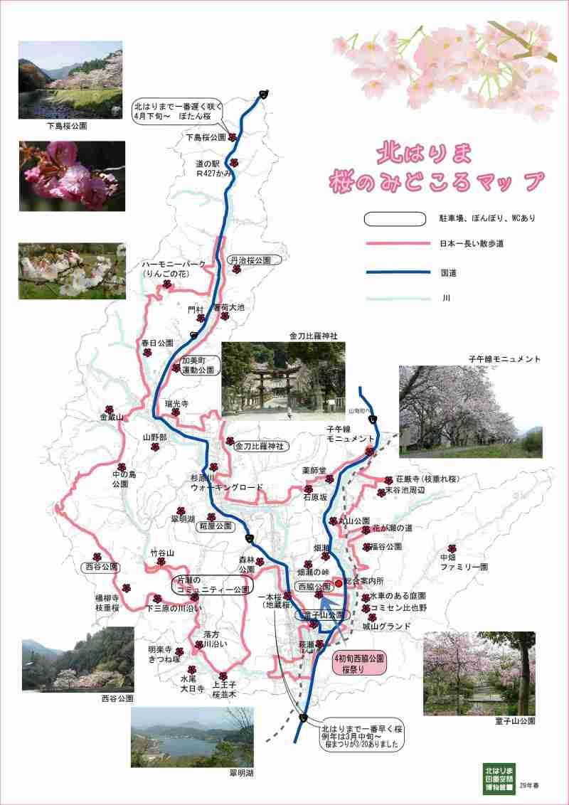 北はりまの桜の見どころ
