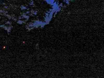 170610  【レポート】あじさい園とホタルをめぐる夜のバスツアー