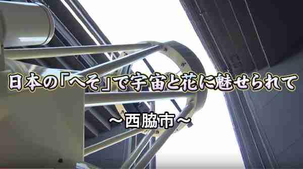 2017年6月25日放送 「ひょうごワイワイ」ふるさと新発見:テラ・ドーム 西林寺