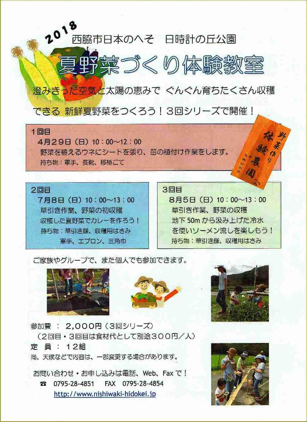 夏野菜づくり体験教室(4/29~)参加者募集:日時計の丘公園
