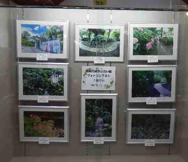 9月 ショーケース展示:都麻乃郷あじさい園フォトコンテスト