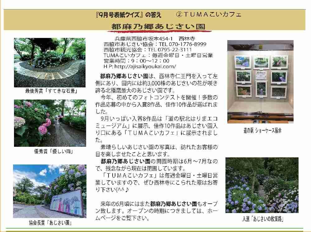 9月の表紙サテライトクイズの答え ②TUMAこいカフェ