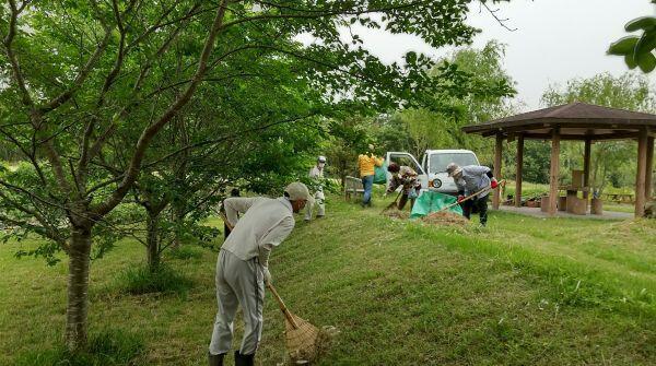 200606 【レポート】ハーブ園のビオトープ整備