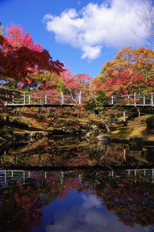 多可町余暇村公園の紅葉が始まりました