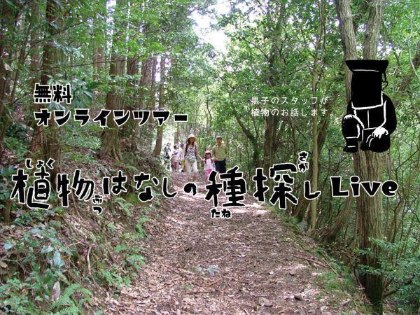 4/25 植物はなしの種探し Live(オンラインツアー):なか・やちよの森公園