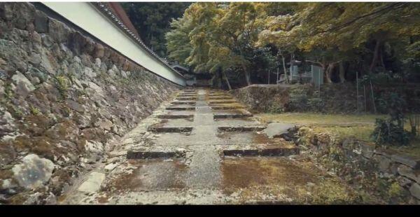 【動画】 新緑の「荘厳寺散策」本堂・多宝塔への参道