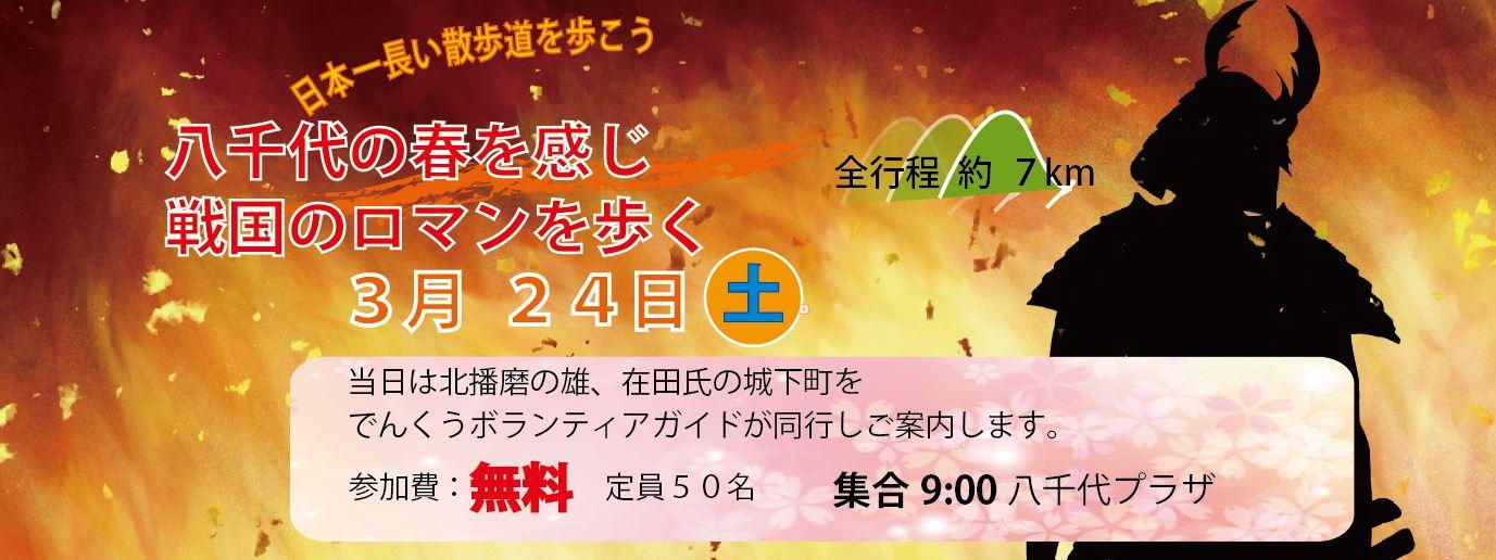 324散歩道(1/30)