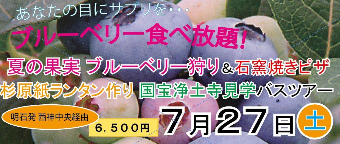 7/27ブルーベリー狩りバスツアー(5/7)